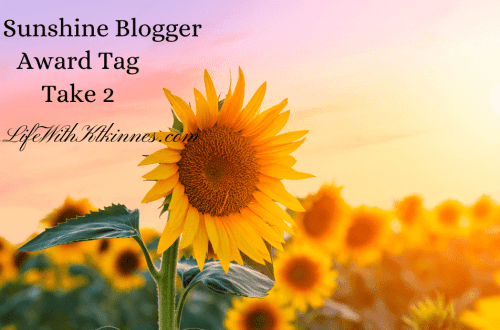 Sunflower in the Sunshine for the Sunshine Blogger Award Tag