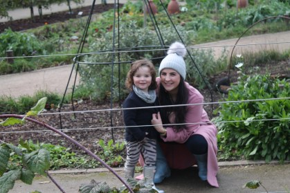 A Morning in the Botanic Gardens