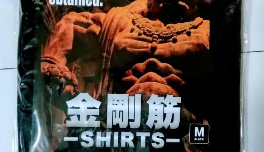 金剛筋シャツの実際の効果を買って試してみた!実際効果あるのか?着るだけで痩せていくのか?楽にダイエットできるか?