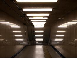 LXP Lifexpe Life Experienced engineer fluorescent light bulbs