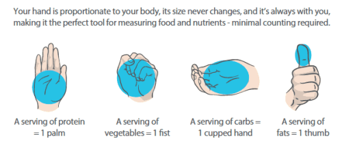 Finding Balance In Meals - Portion Sizing