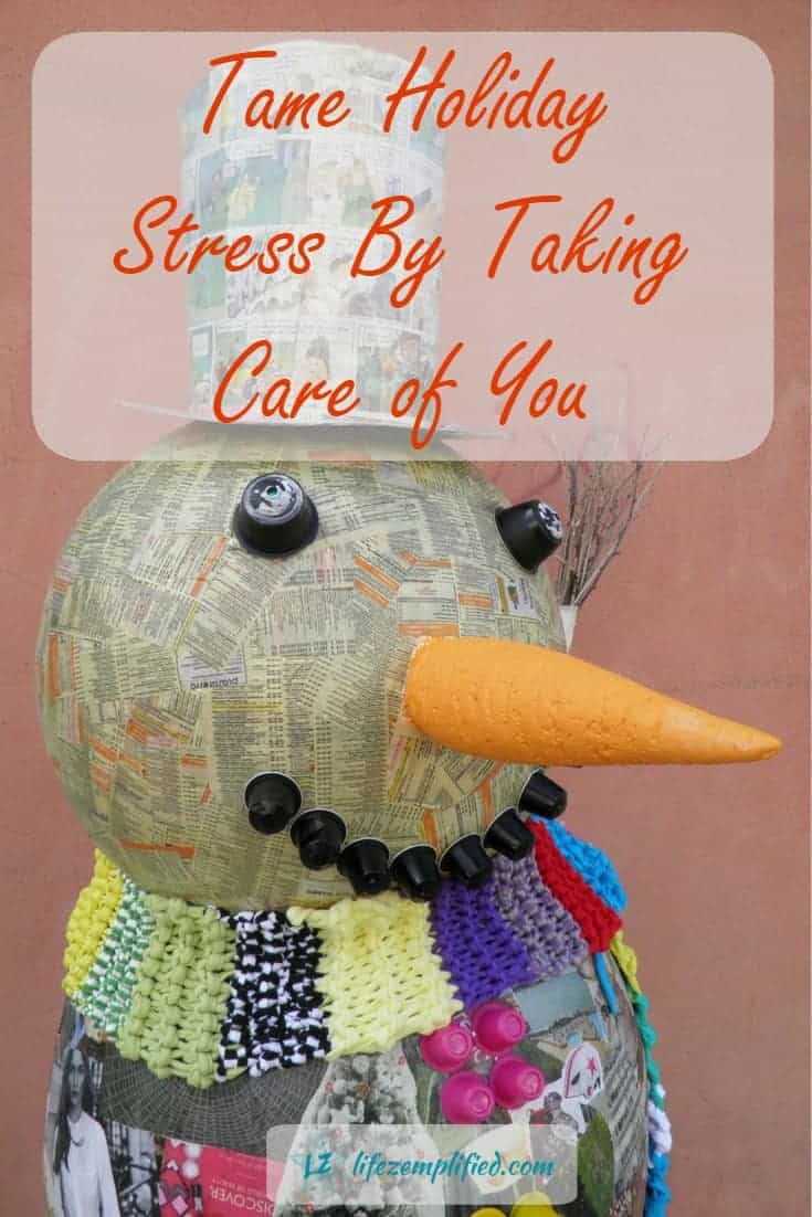 Stress can take its toll on us in many ways. Take time to care for yourself, check out our 25 ideas for taming the holiday stress monster.