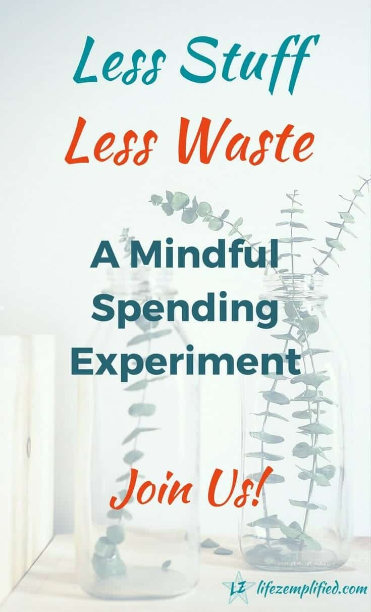 Join along on our mindful spending experiments to break the cycle of consumption and waste. Buy and own less stuff, and produce less wastage, while saving money and helping the environment in the process. #shoppingban #lesswaste #lessstuff #minimize #simpleliving