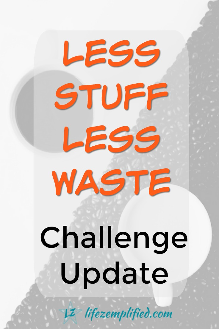 This mindful spending experiment is an effort to not only keep spending in check - but to also consciously think about the waste we are creating with any spending we do. And to actively work to reduce this waste. Check out this update to see how we and others are doing on a less spending, less waste challenge. #lessstuff #lesswaste #nospend #repurpose #reimagine