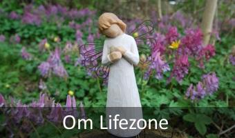 Om Lifezone