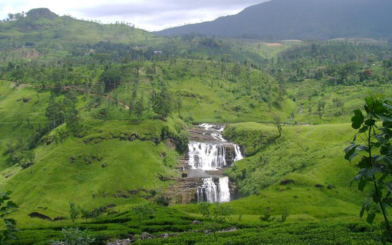 places to visit in Nuwaraeliya
