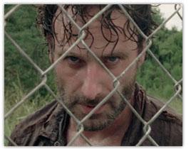 The Walking Dead 310
