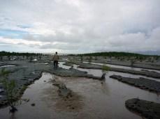 Vasière présentant des chenaux créés par les marées