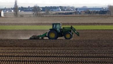 صورة الحكومة الإسبانية تدعو إلى خطة تحديث للآلات الزراعية بقيمة 8 ملايين يورو لهذا العام