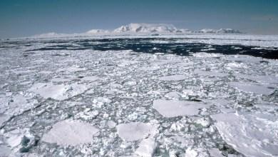 صورة إسبانيا اختتمت رئاسة منظمة الموارد البحرية في أنتاركتيكا مع الحفاظ على إنشاء مناطق بحرية محمية على جدول الأعمال العالمي