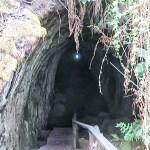 túneles de lava en santa cruz en galápagos