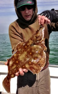 Dan's Lure Caught Plaice