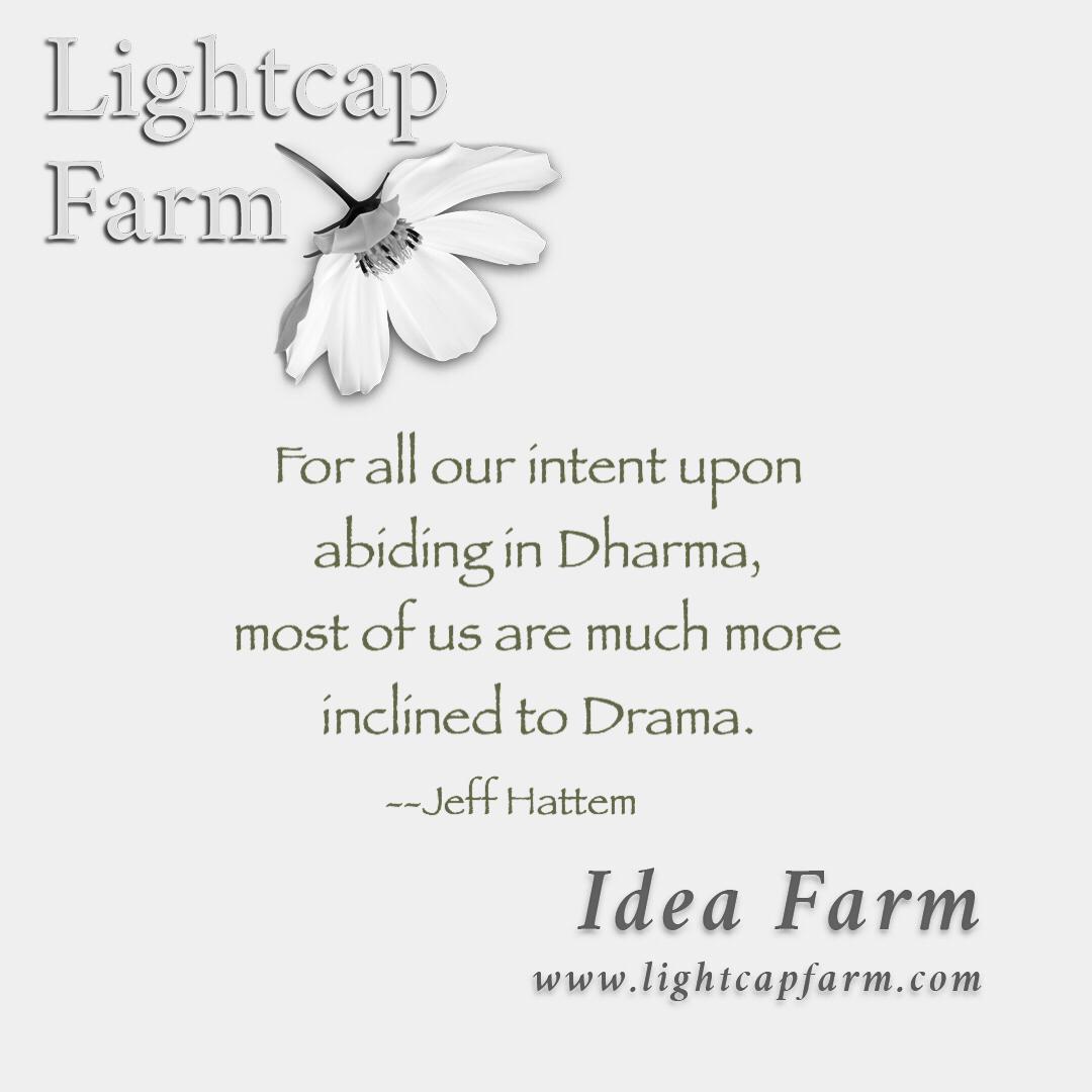 Dharma/Drama