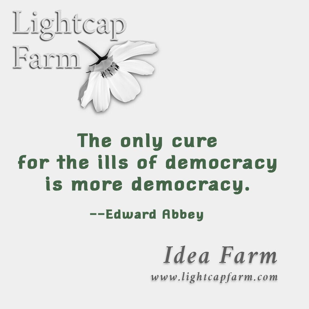 IllDemocracy