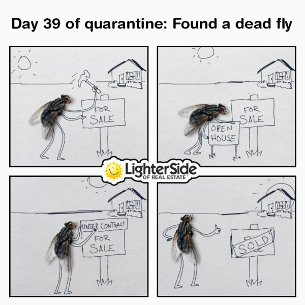 memes that best describe the pandemic we are facing Memes that best describe the Pandemic we are facing covid memes 03