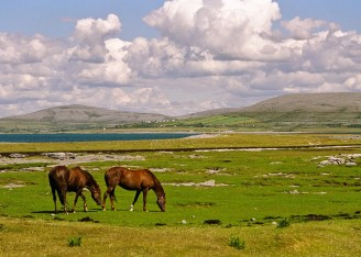 A beautiful day in the Burren, near Ballyvaughan, County Clare. Image www.IrishLandscapes.ie