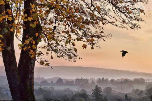 Autumn mist in Corofin Co. Clare. Photo Clare by Nature https://www.facebook.com/clarebynature