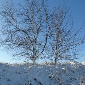 snieg i niebo2