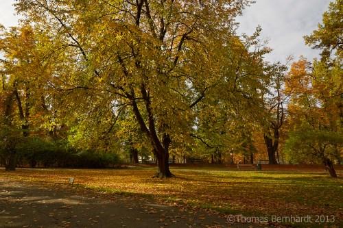 The Stadtpark in Graz, Austria, autumn in full colour.