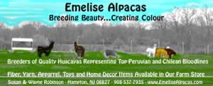 Emelise Alpacas(small)