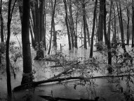 wetlandsHCTKillbuck1
