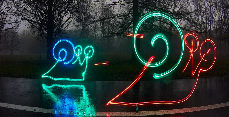 Гонка улиток из анимации Foggy park