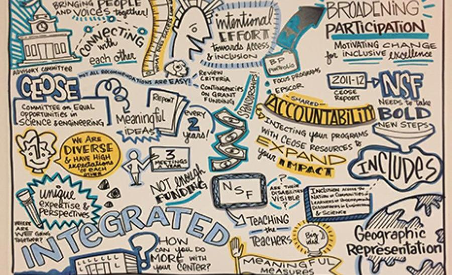Notes from the NSF INCLUDES Summit