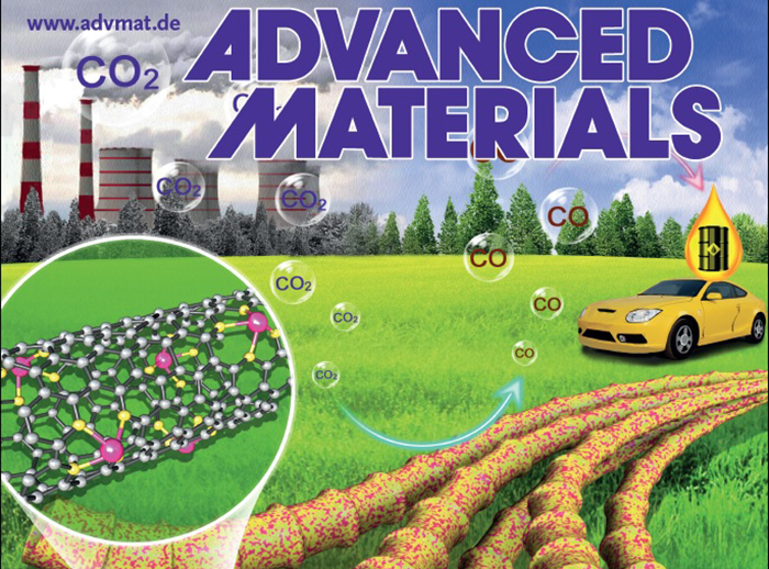 New class of single atoms catalysts for carbon nanotubes