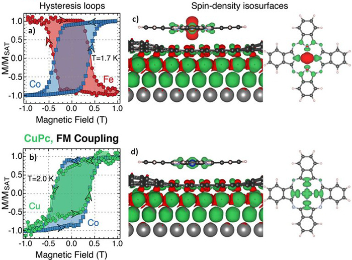 Ferromagnetic and antiferromagnetic coupling of spin molecular interfaces