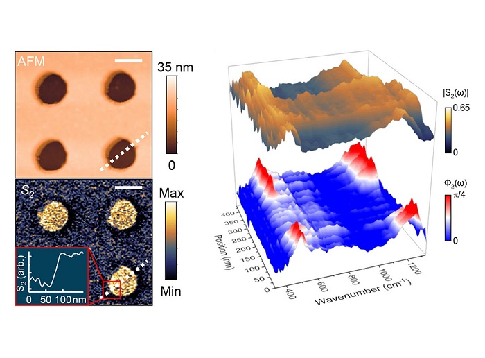 Expanding the infrared nanospectroscopy window