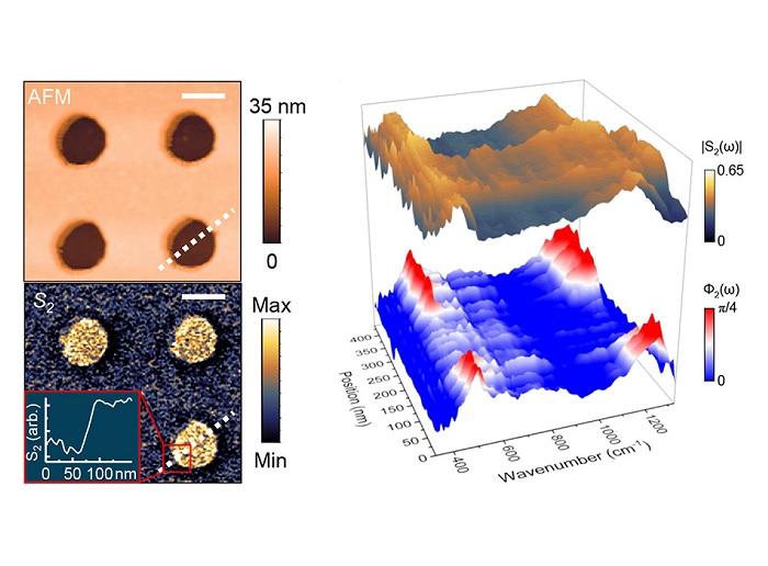 Expanding the infrared nanospectroscopy window