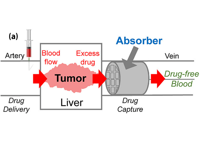 Absorber captures excess chemotherapy drugs