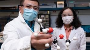 Researchers holding a model of 1,2-dimethoxyethane