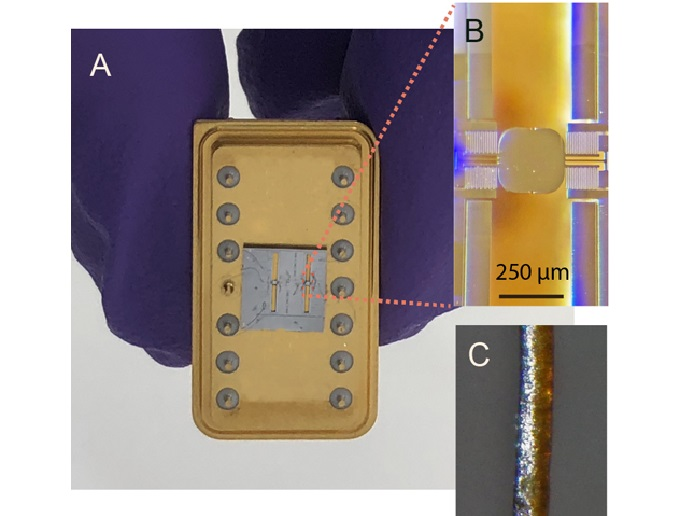 Tiny Chip-Based Device Performs Ultrafast Manipulation of X-Rays