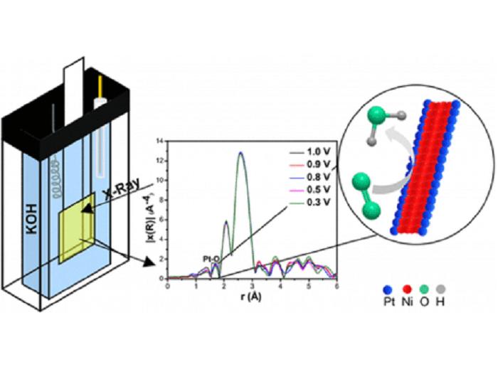 In situ spectroscopy as a probe of electrocatalyst performance
