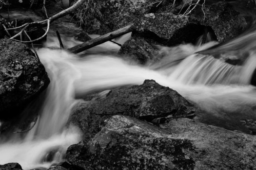 Water flows over and around rocks and fallen branches in Crazy Creek,along the Beartooth Highway. The Beartooth Highway runs between Montan and Wyomong.