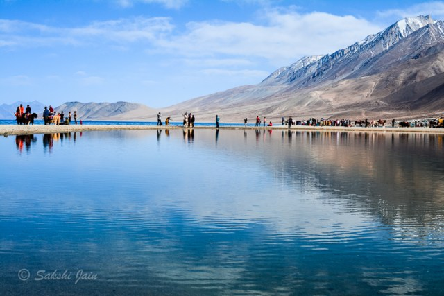 Nature's reflection at Pangong