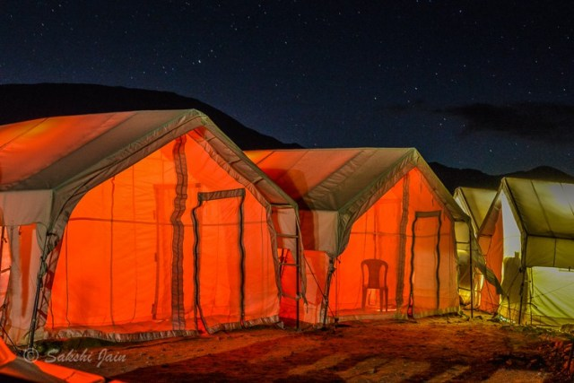Camping under the stars at Pangong
