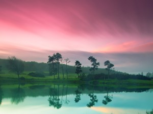 morningnature-rivergreen-pink-sky