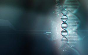 DNAを起動する by クライオン