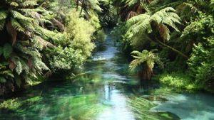 清浄な水を大量補給する by セント・ジャーメイン