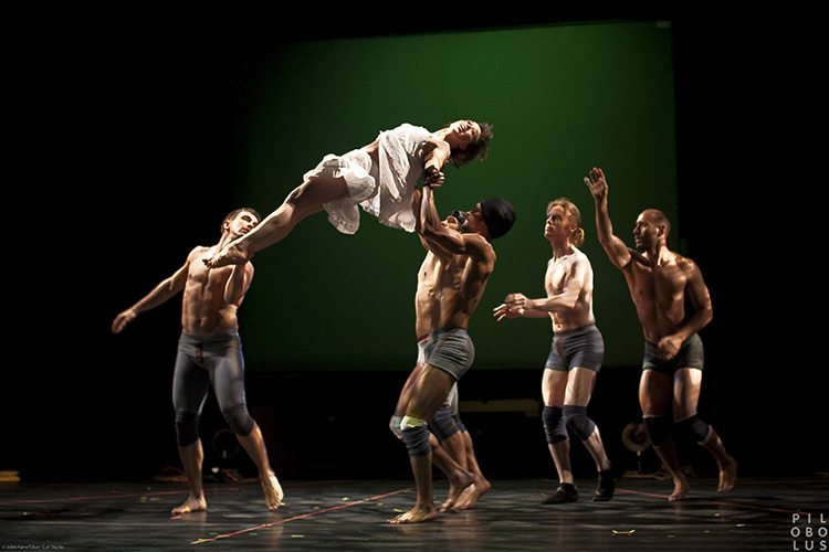 Pilobolus,-Shadowland-08_photo_John-Kane