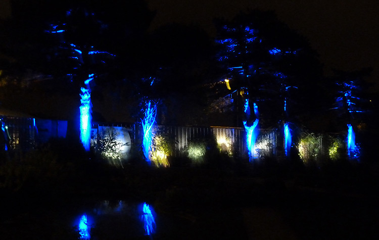 Jardin des Plantes, Nantes 2014 - Pavillon--Photo-Jean-Baptiste-Wallers-Bulot