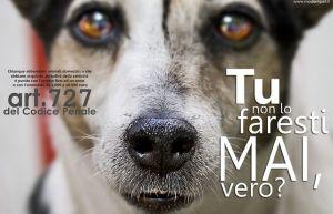 Campagna contro l'abbandono dei cani