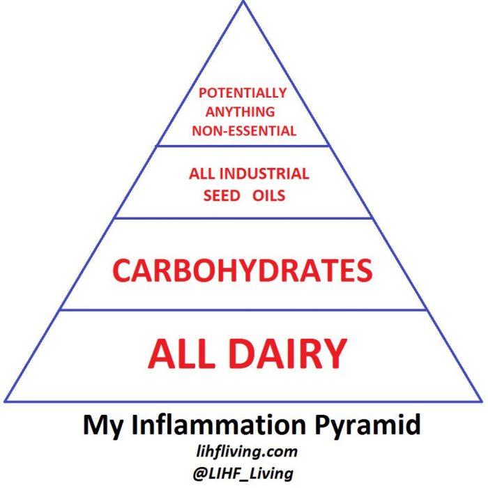 The Relationship Between Diet  Inflammation  U0026 Longevity