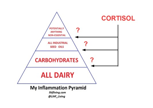 inflammation_pyramid_stress