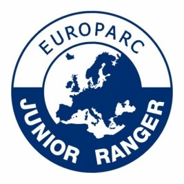 JuniorRanger