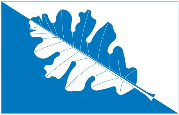 laaneranna diagonal_leaf