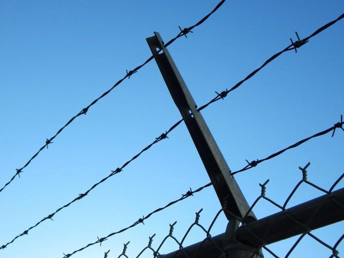 Kaks juhti viidi roolist otse vanglaseinte vahele
