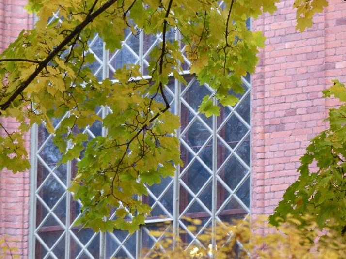2013-10-09 Kirkon ikkuna lehtien takana